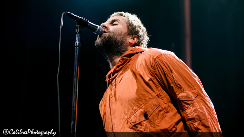 Liam Gallagher Web 5.11.18_Calibree (27 of 67) logo
